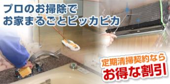 プロのお掃除でお家まるごとピッカピカ